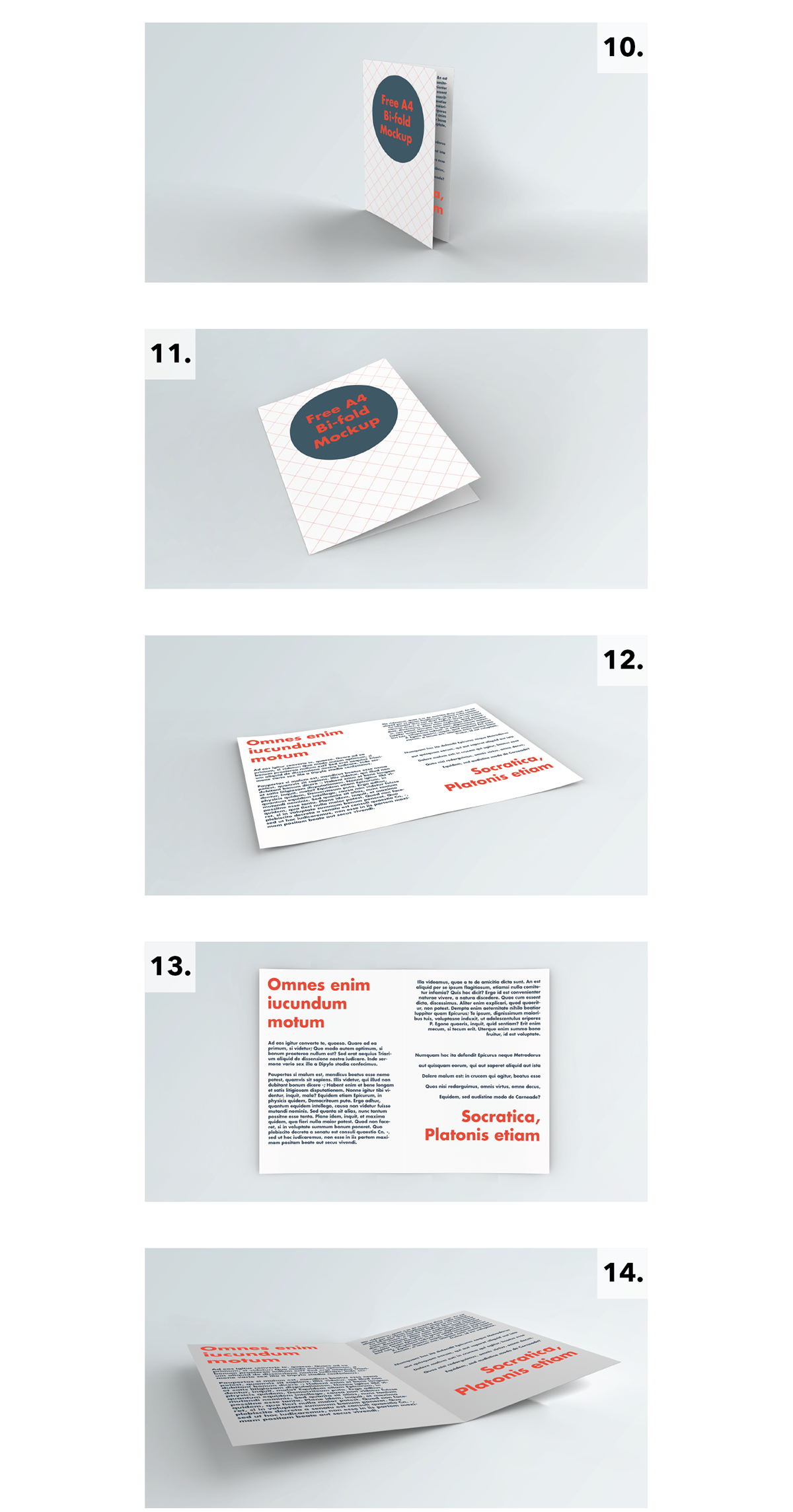 Free A4 Bi-Fold Brochure Mockup With 14 Styles-2