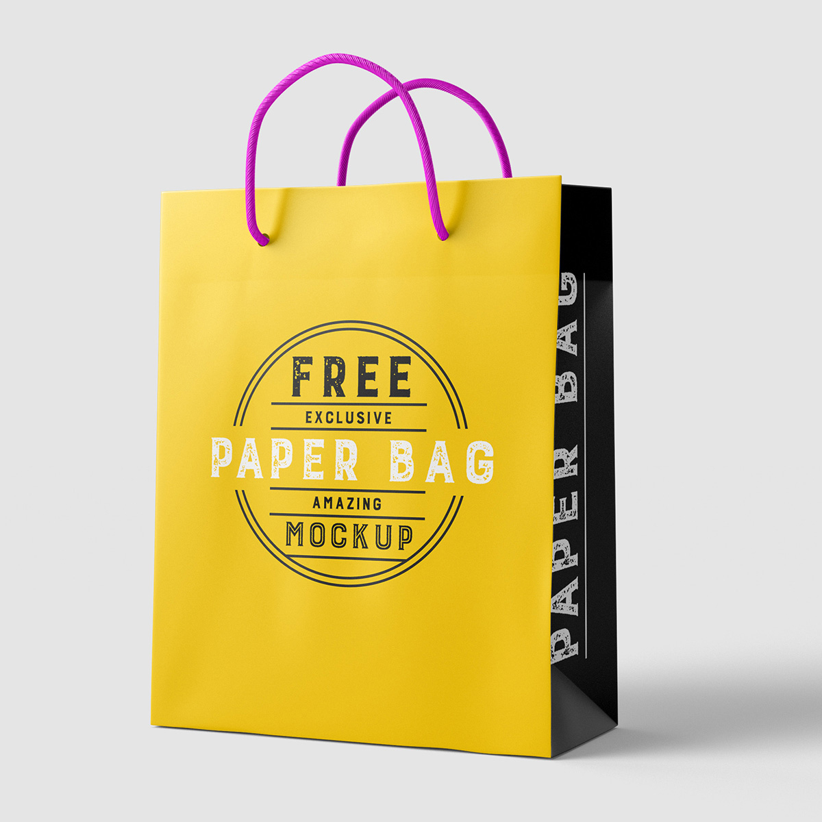 Free-Beautiful-Paper-Shopping-Bag-MockUp-Psd-Template-2