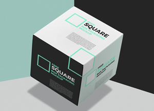 Square-Box-PSD-Mockup.jpg