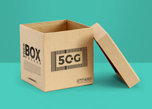 Free Packaging Box Mockup with Open Lid