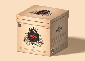 Free-Square-Box-Branding-Packaging-Mockup-300.jpg