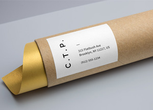Free-Cardboard-Tube-Packaging-MockUp.jpg