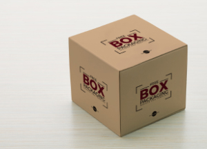 Box-Packaging-Mockup-PSD-Template.jpg